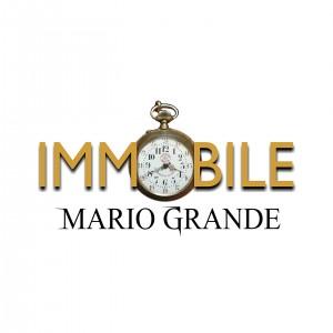 Mario Grande - Immobile